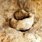 Автентичноста на Гробот Христов и Голготската карпа III дел
